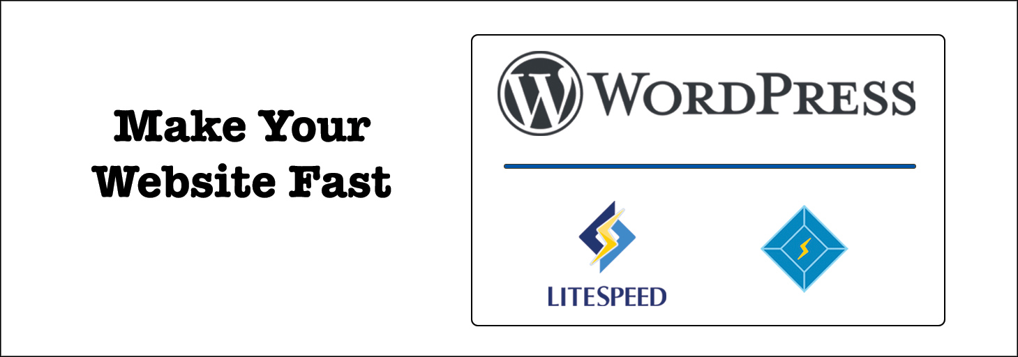 Read more about the article WordPress hosting with LiteSpeed